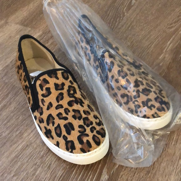 33938b6f57f6 Anna Shoes | Brand New In Box Leopard Sneaker | Poshmark